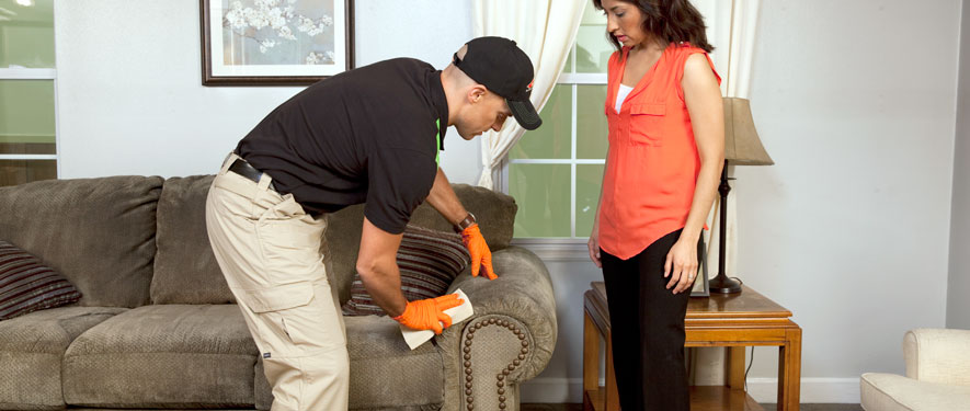 South Euclid, OH carpet upholstery cleaning